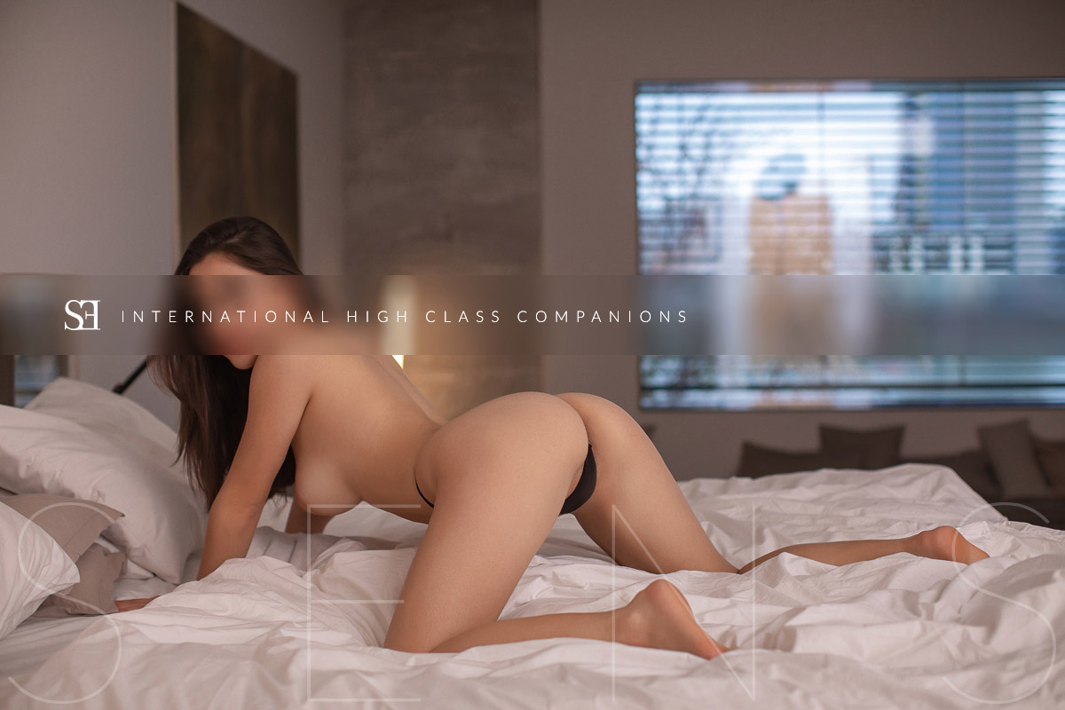 luxury-student-escorts