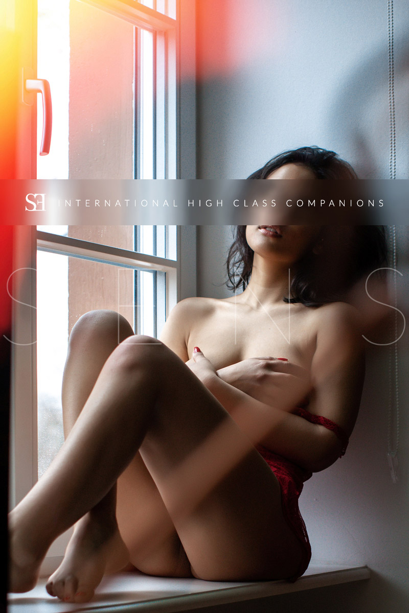 premium-escorts-germany